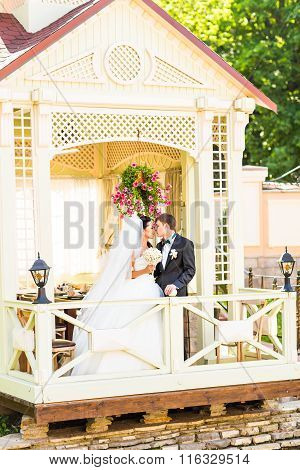 Wedding, Beautiful Romantic Bride with the Groom Kissing and Embracing