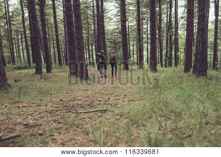 Two Friends Trekking In Forest. Rear View.