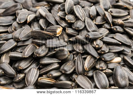 organic black sunflower seed for background uses