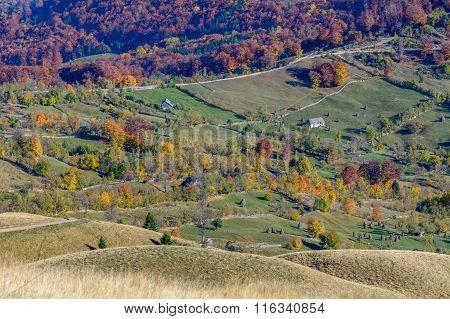 Horizontal Autumn Mountain Landscape With Stacks, Animals, Fences. Beautiful Sunny Autumn Mountains