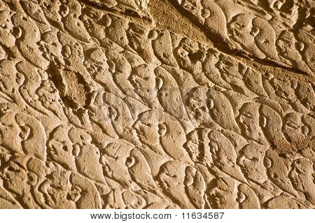 Ancient Egyptian Army, Kadesh