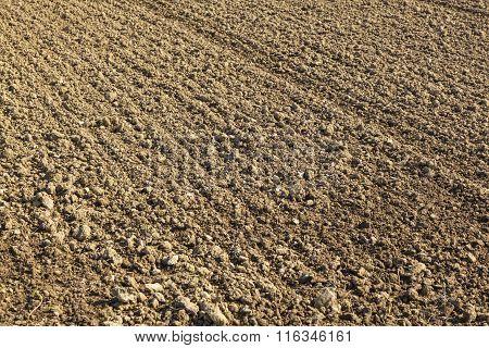 Freshly Ploughed Field In Spring