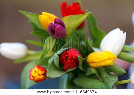 Colorful Bouquet Flowers