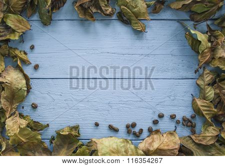 Background Of Coffee Leaves And Seeds