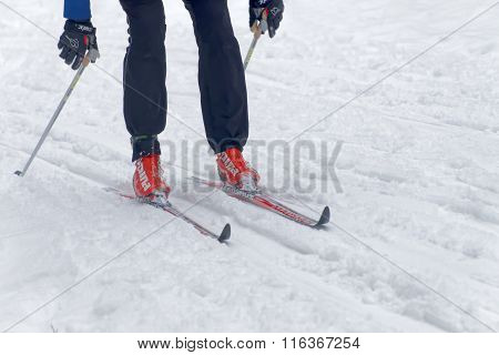 Close Up Of Colorful Skies, Feet And Legs Of A Cross Country Skier
