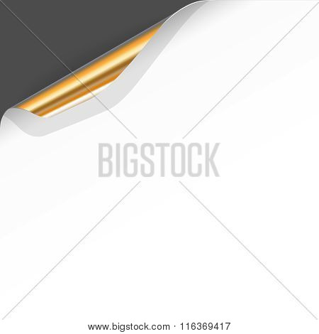 Banner with Curled White Paper Corner