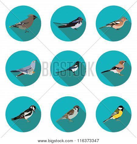 Flat Icons Birds