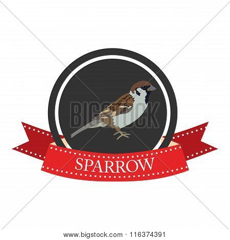 Flat Icon Sparrow