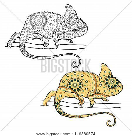 Two vector illustratons of chamaleon