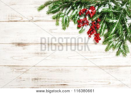 Christmas Decoration. Evergreen Tree Branch With Red Berries