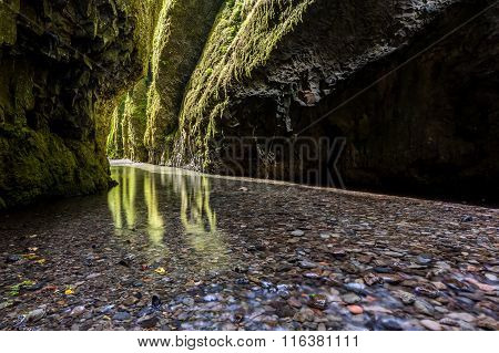 Hiking in Oneonta Gorge trail Oregon, USA