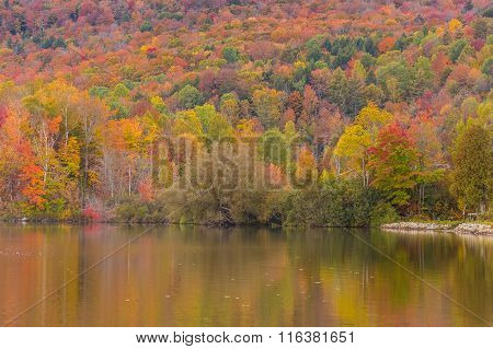 Autumn Foliage And Reflection In Vermont, Elmore State Park
