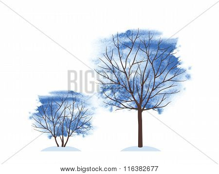 Winter trees. Winter time.