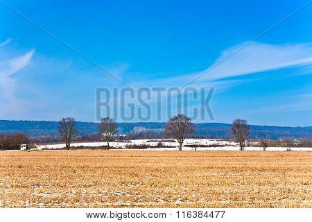 Beautiful Landscape With Field In Winter