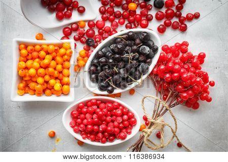 Frozen berries on a grey metallic background - aronia cranberries sea buckthorn viburnum cowberry