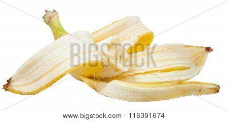 Bitten Ripe Banana In The Peel Isolated