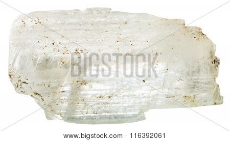 Crystal Of Gypsum Mineral Stone Isolated On White