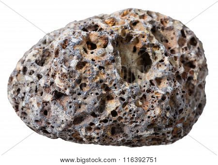 Pebble From Gray Pumice Natural Volcanic Stone