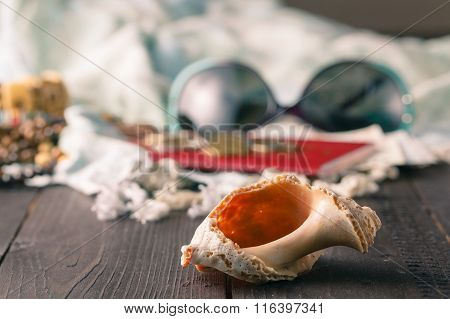 Shells, Pareo On The Wooden Background