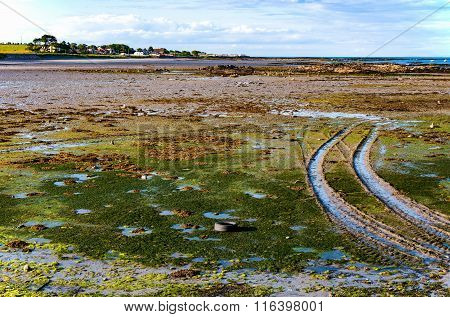 Low Tide In Northern Ireland