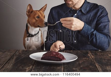 Man Share Piece Of Steak With Dog