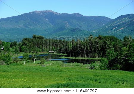 spring mountain, valley, river in green color