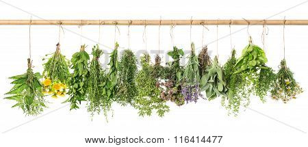 Herbal Apothecary. Fresh Herbs Hanging. Basil, Rosemary, Thyme