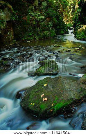 River Doubrava, Vysocina Region, Czech Republic