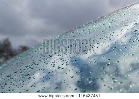 Rain Water Drops