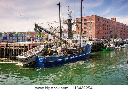 Herring Fishing Boat In Portland, Maine