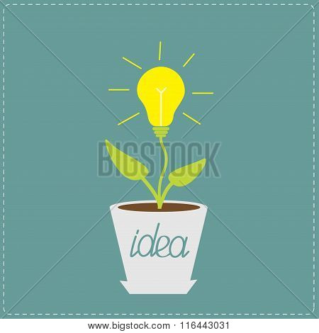 Lamp Bulb Plant In The Pot. Growing Idea Concept.