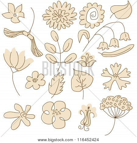 Set Of Summer Floral Elements Painted In Beige Color. No Mesh, Gradient, Transparency Used. Objects