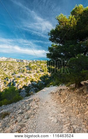 Beautiful nature of Calanques on the azure coast of France.