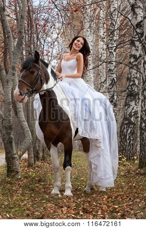 Young Bride And Horse