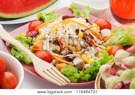 Vegetable Salad And Vegetarian Food.