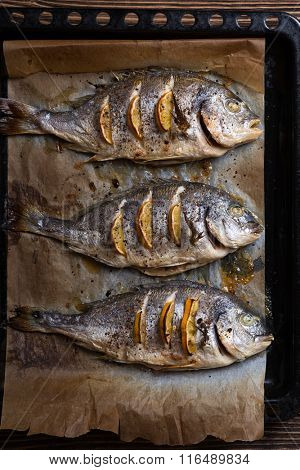 Delicious roasted sea fish. Healthy food, diet or cooking concept
