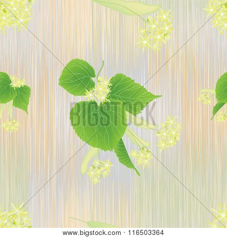 Seamless pattern with linden inflorescence on striped background in pastel colors