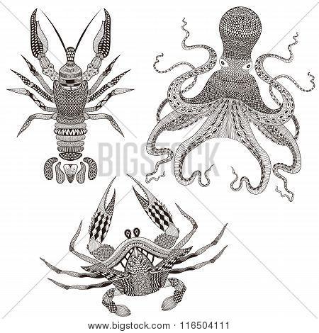Zentangle stylized Octopus, King Crab, Crayfish. Hand Drawn dood