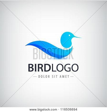 Vector blue bird logo, icon isolated. Abstract company