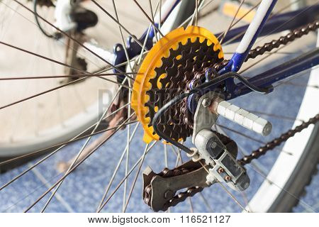 The Mountain Bike Gears Cassette