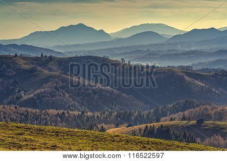 Picturesque Rural Landscape