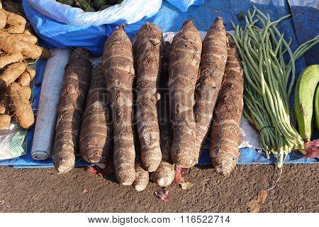 cassavas and siliculose haricot