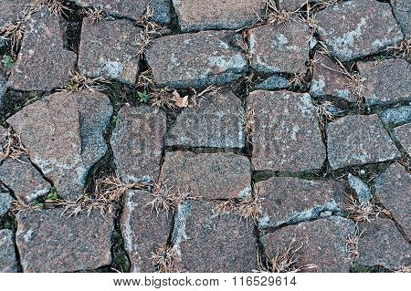 old cobbles with grass