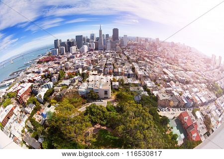 Fisheye view of San Francisco panorama from hill