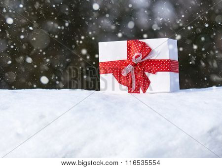 Gift box with red bow on snow in winter forest. One object. Christmas holiday concept.