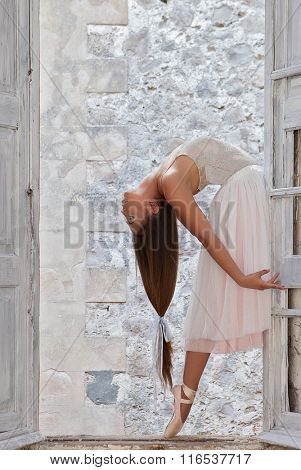 elegant ballet dancer with beautiful long hair