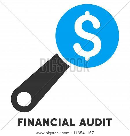 Financial Audit Glyph Icon With Caption