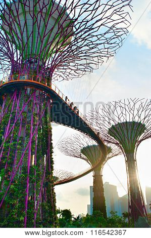 Sunny Gardens By The Bay