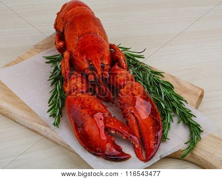 Boiled Lobster