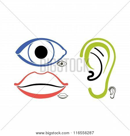 Eye, mouth, ear